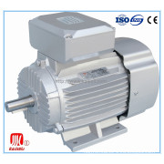 CE Approved Single Phase Capacitor Start Electric Motor, Electrical AC Motor