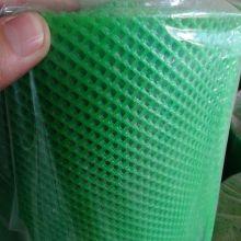 Grüne Farbe extrudiert Kunststoff Plain Net