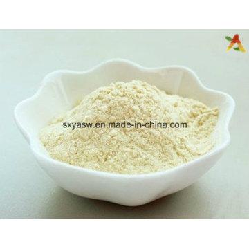 Natürliche hochwertige Mangosteen Schale / Rinde Pulver
