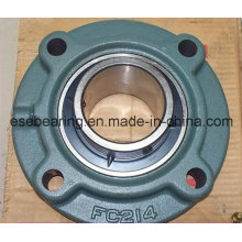 Pillow Block Ball Bearing (UCFC214)