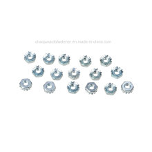 High Quality Keps Lock Nut (CZ004)