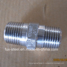 BSPT fil inox 304/316 hexagonal raccord Direct usine