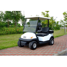 Hot Sale 2 Seater Electric Golf Buggy