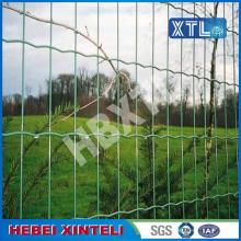 OEM/ODM for Welded Wire Mesh Fence PVC Coated Metal Holland Wire Mesh supply to Argentina Supplier