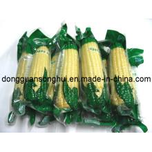 Laminated Vacuum Food Bag / Vacuum Packaging Bag / Vacuum Bags