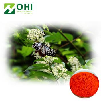 Gotu Kola Extraktpulver Centella Asiatica