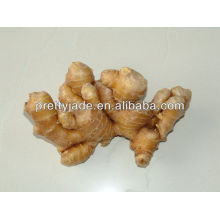 50-200g fresh ginger