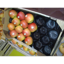100% Food-Grade PP Standard Fabrikgröße Fresh Apple Obst Verpackung Best Selling in Europa Market