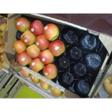 100% de qualité alimentaire PP standard usine Taille Emballage de fruits frais de pomme Meilleure vente sur le marché de l'Europe