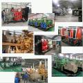 100квт СПГ СПГ Biogass природный газ Мощность двигателя, электрического генератора или генератора
