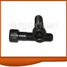 Customized for Hex Socket Bolt Allen Bolts export to Tajikistan Importers