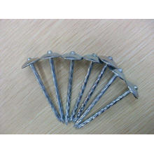 Umbrella Roofing Nails Precio
