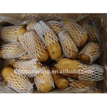 2012 frische Kartoffel