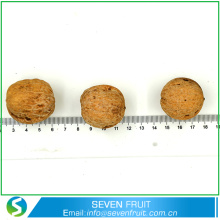 Hot Selling 2016 Best Walnuts In The World