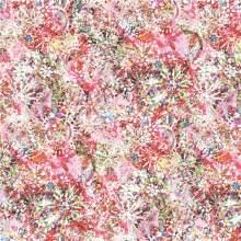 Digital Print Silk Fabric for Clothing (XF-0026)
