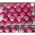 Apple Fuji best quality for sale