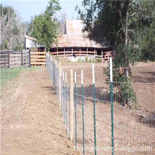 field fence 8