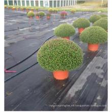 Estera de la mala hierba Estera de la mala hierba de la cubierta del suelo con los UV