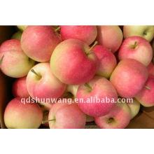 Manzana de gala fresca