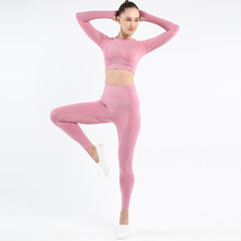 Long Sleeve Yoga Top & suit Yoga
