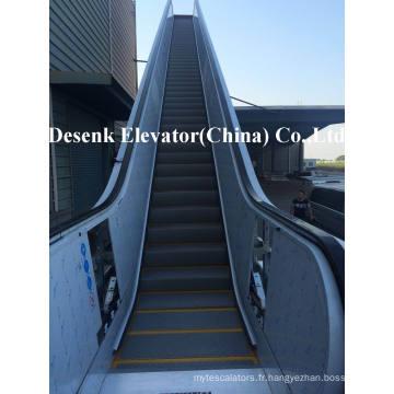 Dsk Escalator