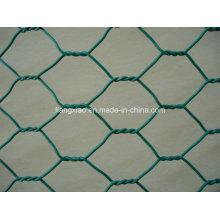 Cesta de gaviota de PVC (HPZS5003)