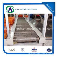 Chain Driven Belt (factory) Hot Sale
