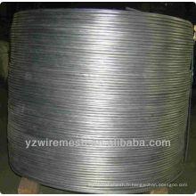 Usine de fils de fer en acier au carbone