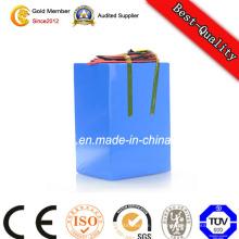 Batería de almacenamiento de poder de alta calidad de 12V Li-Polymer de descarga completa