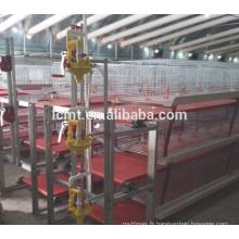 Poulet Application poulet machines pour cage de couche