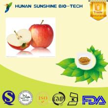 Extracto de Malus domestica, extracto de fruta de manzana, extracto de manzana de Sunshine Manufacturer