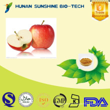 Natural green apple extract with Anti-Aging & Hair Growth, Malus domestica Extract