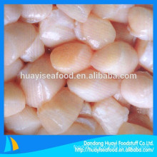 our scallop factory mainly supply frozen bay scallop
