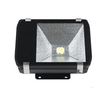 ES-100W LED Tunnel Light