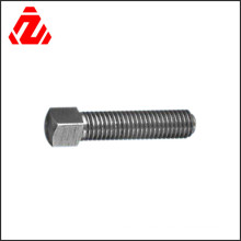 Customizable Stainless Steel Shaped Square Head Bolt