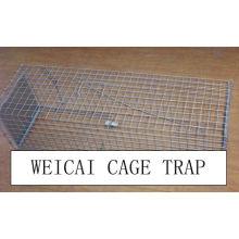 Rabbit, Hare, Cat, Skunks, Raccoon, Ferrets Cage Traps
