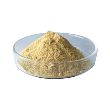 L-Lysine Sulphate 70% Feed Grade
