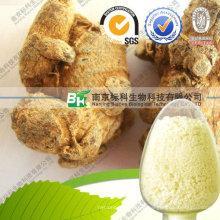 Производитель Высший Сорт Чистый Notoginseng Экстракт Женьшеня Panax Notoginseng Сапонины