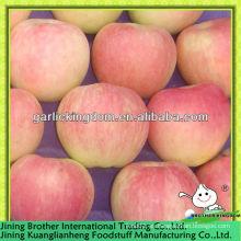 China rojo estrella apple exportador
