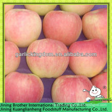 China red star apple exporter