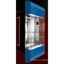 Ascenseur panoramique de luxe pour centre commercial