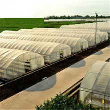 Low price for Single Span Greenhouse Agriculture Single Tunnel Plastic Film Greenhouse export to Moldova Exporter