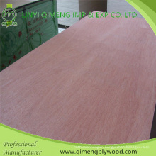 Poplar/Hardwood Core Bbcc Grade 18mm Bintangor Plywood with Cheap Price