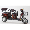 Cargo bike/ golf cart battery