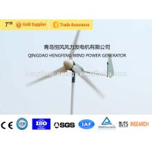 Venta caliente pequeña turbina de viento