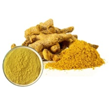 High quality Turmeric Extract