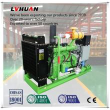 Générateur de gaz Bio de gaz de fumier de vache