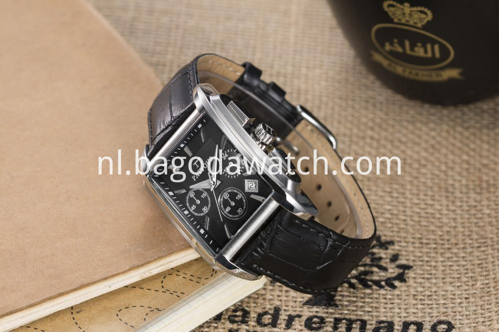 Stainless Steel Watch Polish