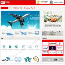 Tarifs de fret aérien / fret à bas prix Expédition à Bagdad Irak de Shenzhen / Guangzhou / Shanghai / Pékin