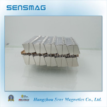 Customized ISO9001 Strong Powerful Permanent Neodymium Magnet for Motor